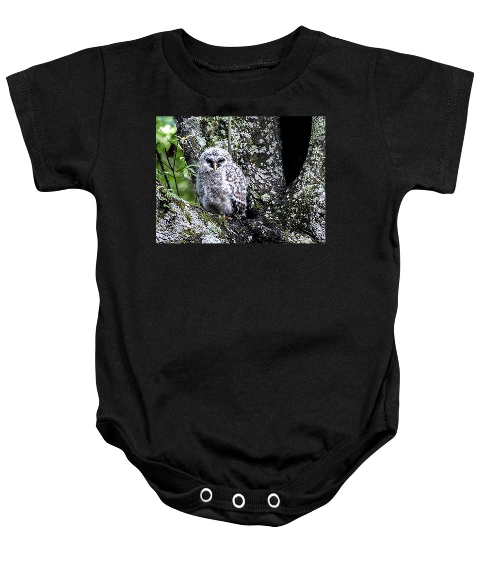 Barred Owl Baby Onesie featuring the photograph Time To Leave by Norman Johnson