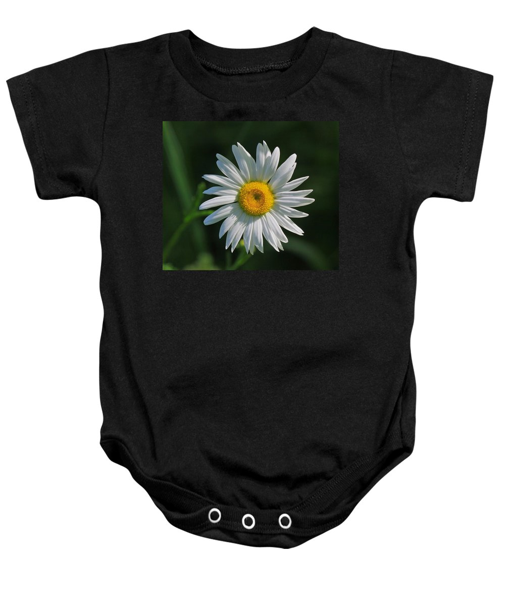 Related Tags: Flowers Artwork Baby Onesie featuring the photograph Tiny Sunshine by Robert Pearson