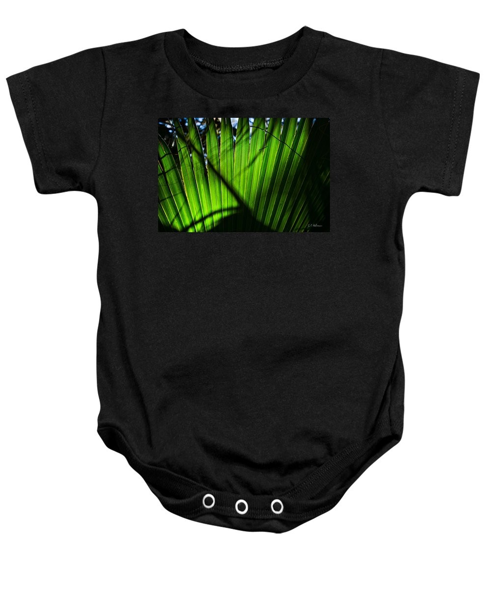 Palmetto Baby Onesie featuring the photograph Translucent Green by Christopher Holmes