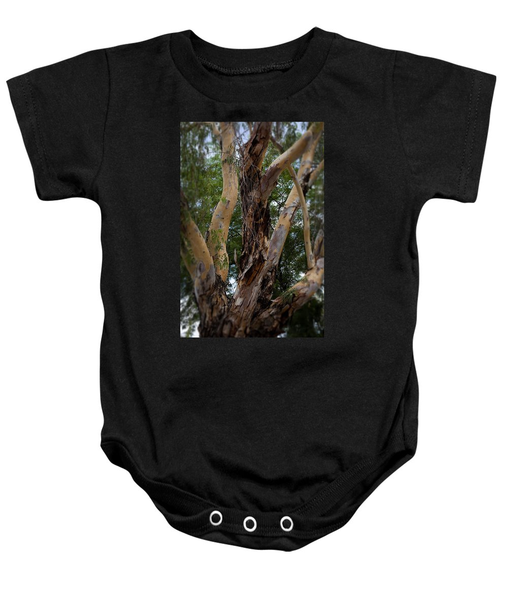 Trees Baby Onesie featuring the photograph Tree Branch Texture 1 by Kelley King