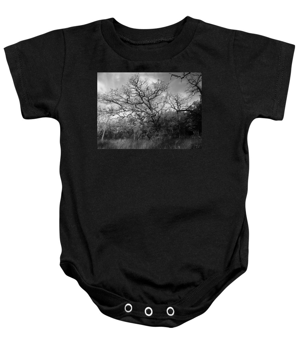 Tree Baby Onesie featuring the photograph Tree by Denise Irving