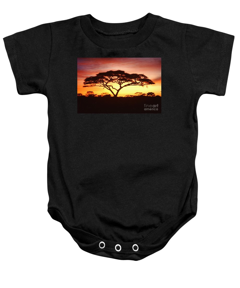 Tree Baby Onesie featuring the photograph Tree Of Life Africa by Jerome Stumphauzer