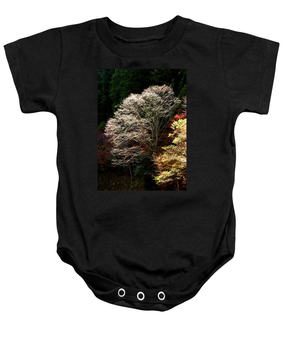 Trees Baby Onesie featuring the photograph Trees In Japan 11 by George Cabig