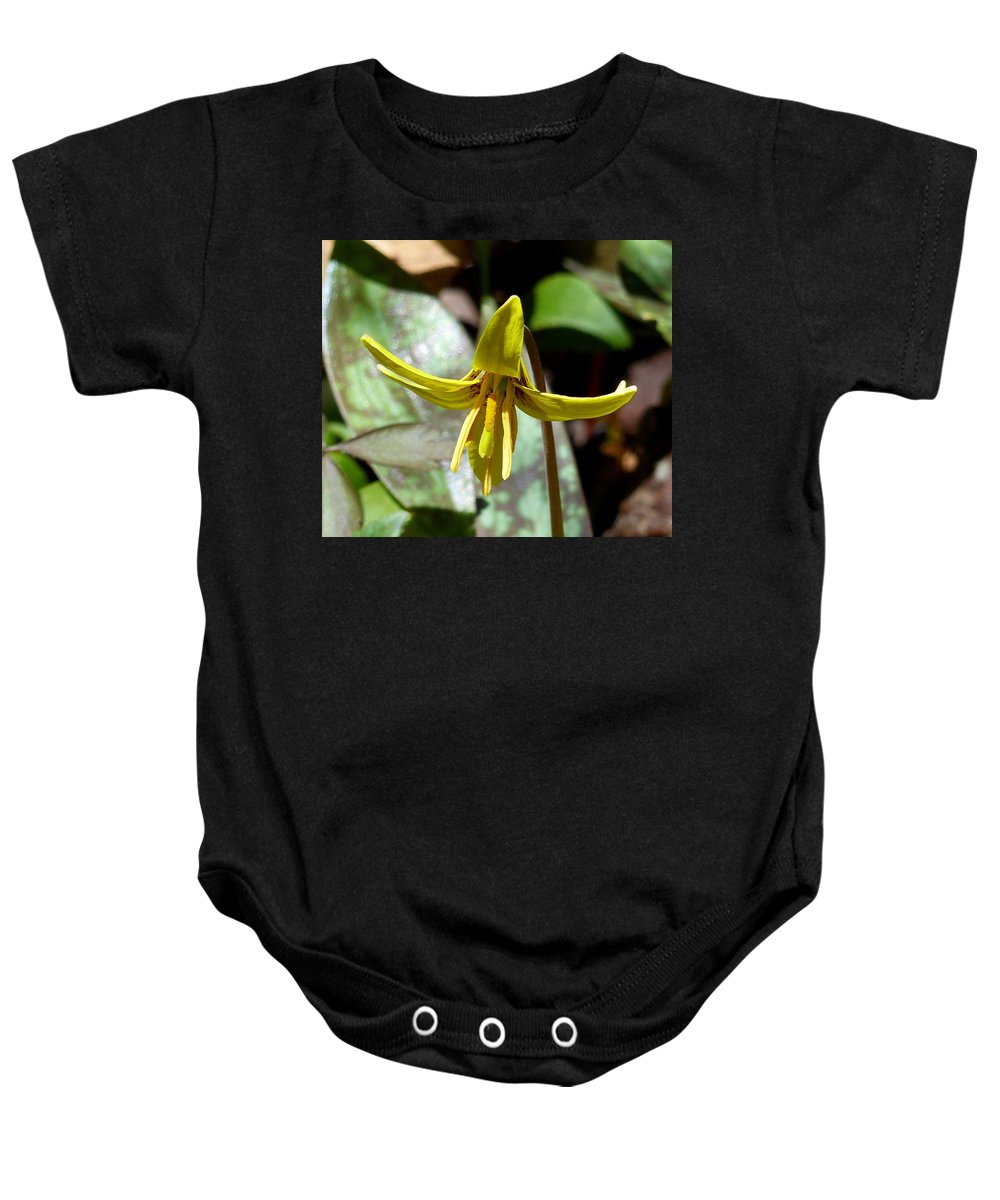 Outdoors Baby Onesie featuring the photograph Trout Lily by Charles Ford