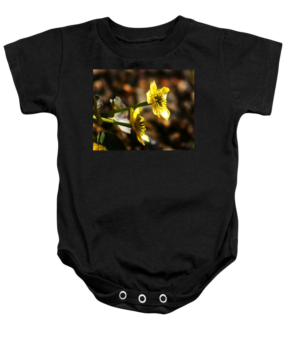 Wild Flowers Baby Onesie featuring the photograph Tundra Rose by Anthony Jones