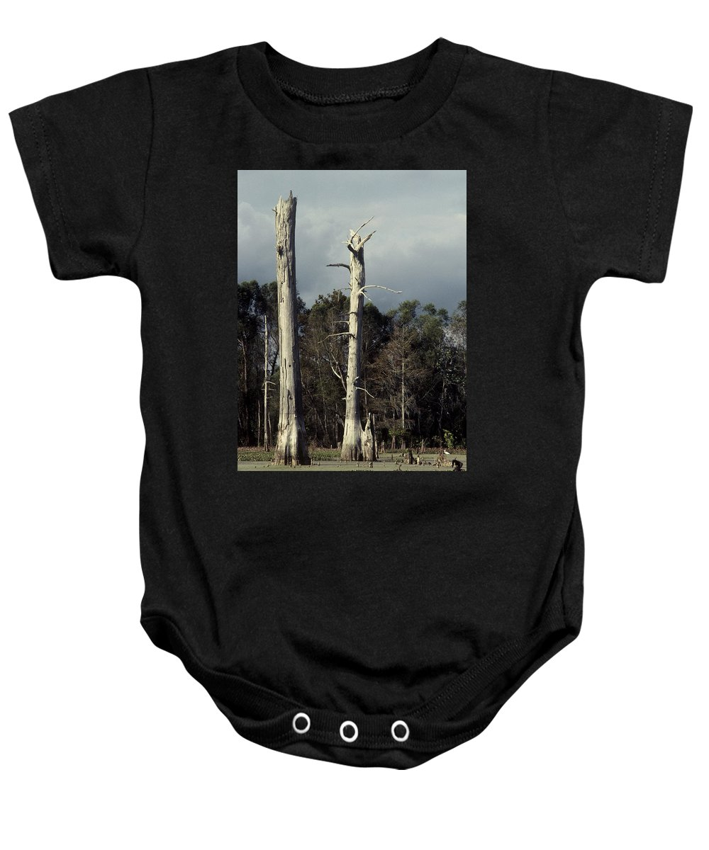 Dead Trees Baby Onesie featuring the photograph Twin Cypress by Herman Robert