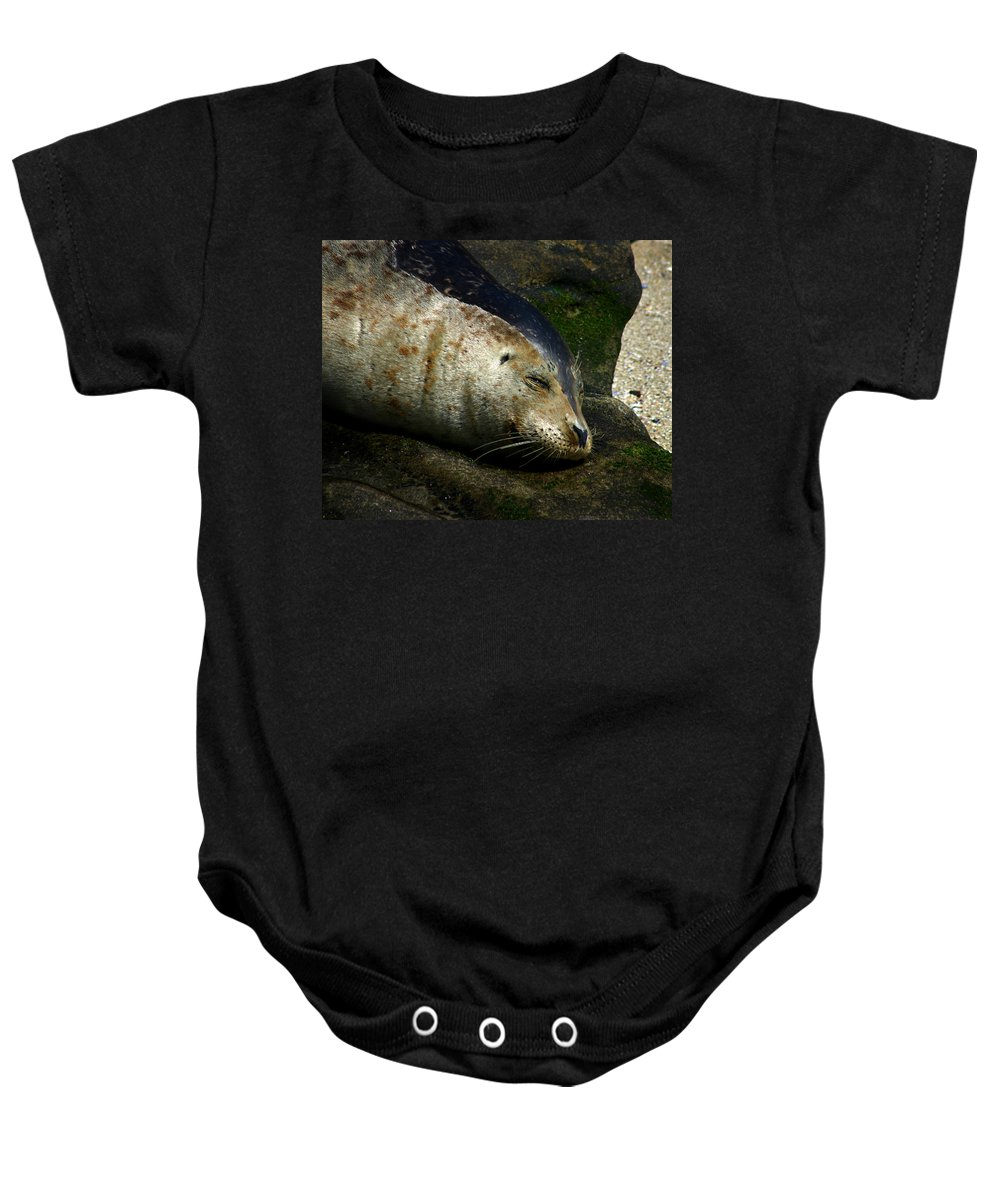 Seal Baby Onesie featuring the photograph Two Tone Seal by Anthony Jones
