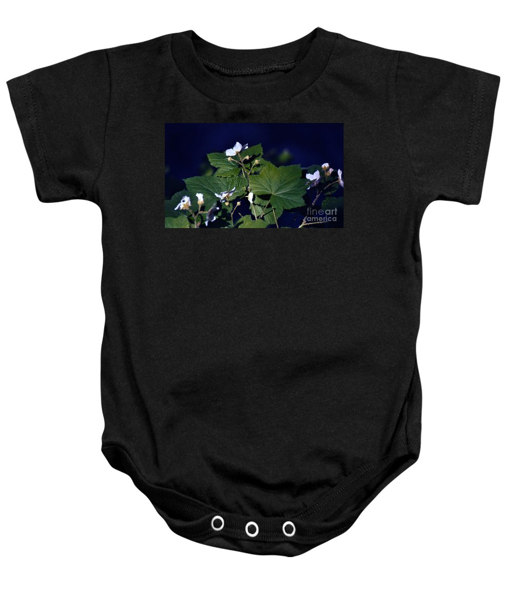Leaves Baby Onesie featuring the photograph Untitled 01 by Peter Piatt