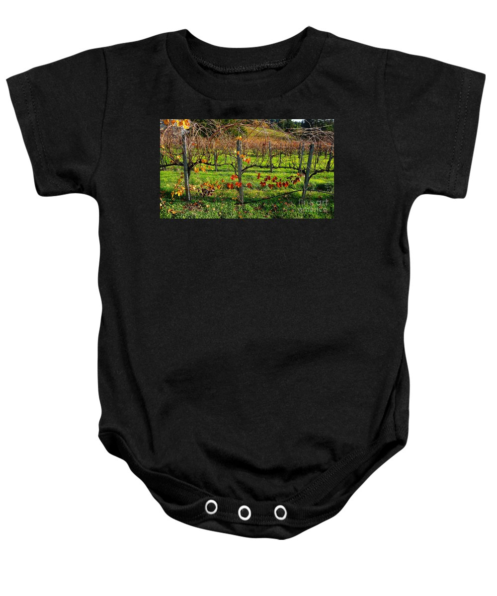California Wine Country Baby Onesie featuring the photograph Vineyard 14 by Xueling Zou
