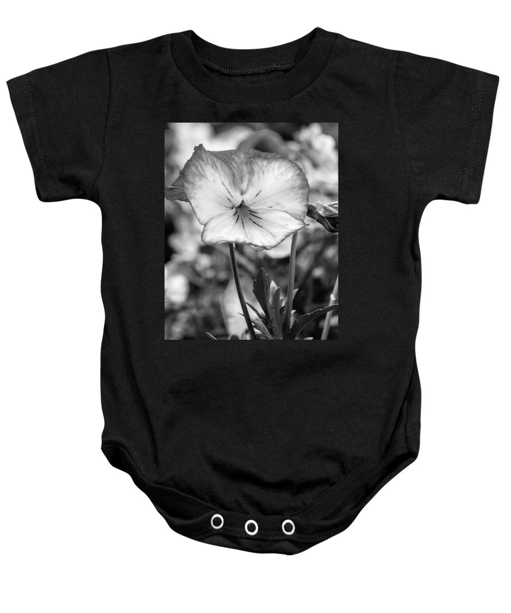 Pansy Baby Onesie featuring the photograph Viola by Michael Lacy