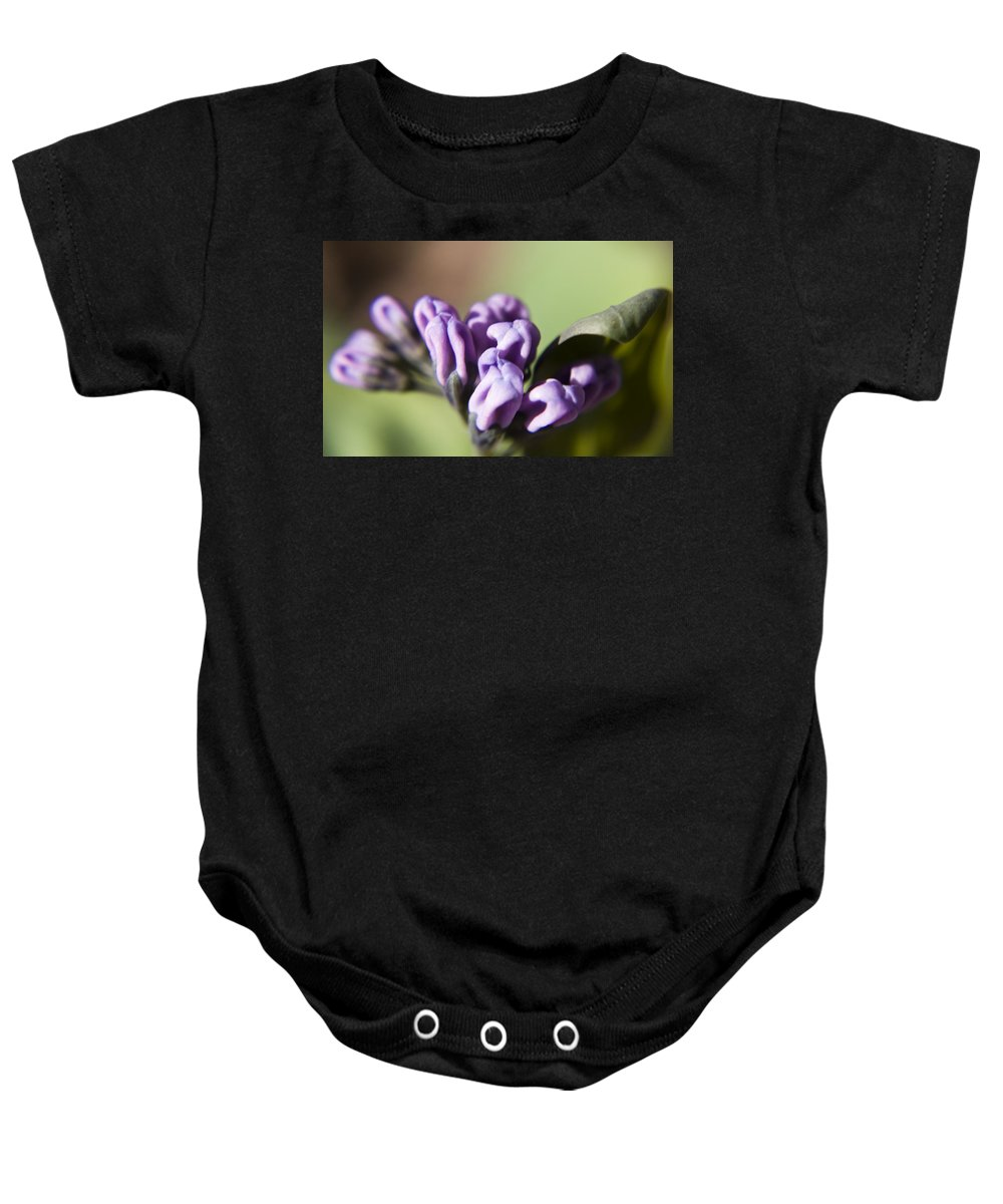 Virginia Baby Onesie featuring the photograph Virginia Bluebell Buds by Teresa Mucha