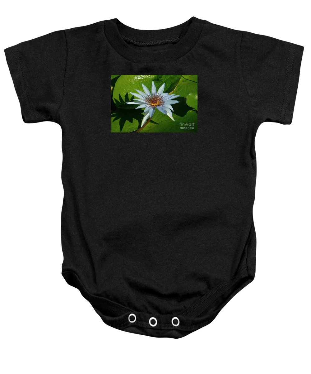 Baby Onesie featuring the photograph Water Lile by Lenin Caraballo