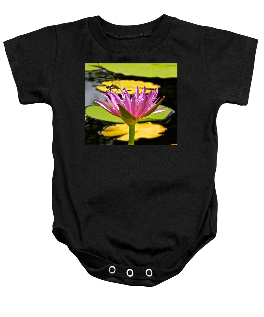 Lotus Baby Onesie featuring the photograph Water Lily With Dragonfly by Joe Wyman