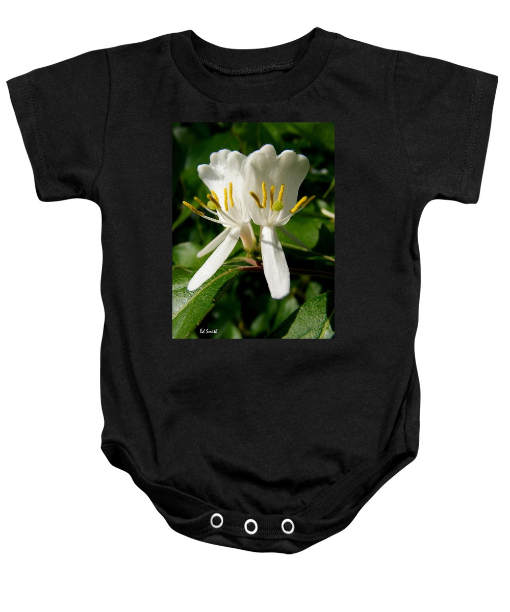 Welcome My Friends Baby Onesie featuring the photograph Welcome My Friends by Ed Smith