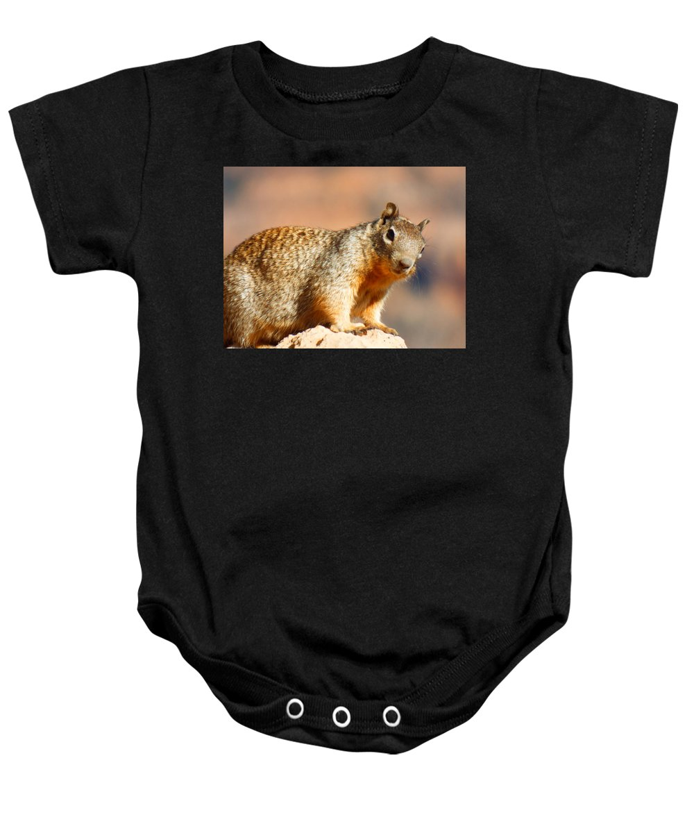Ground Squirrel Baby Onesie featuring the photograph What R U Looking At ??? by Elton Eveningred