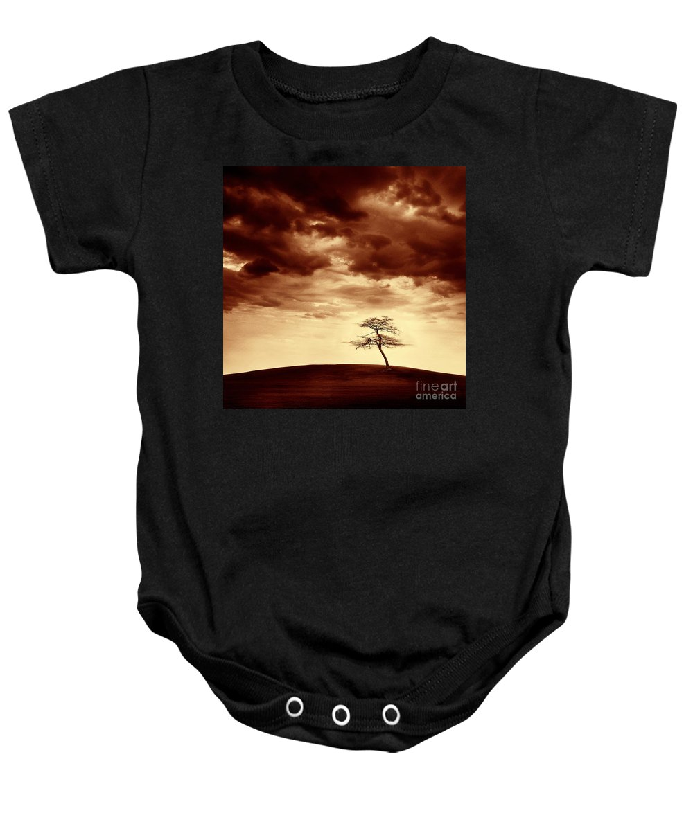Tree Baby Onesie featuring the photograph What Will Be The Legacy by Dana DiPasquale