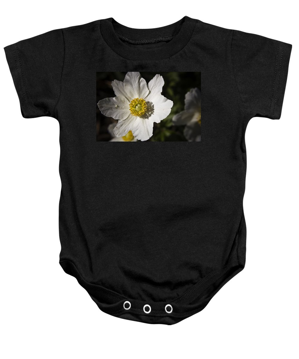 Flower Baby Onesie featuring the photograph White Anemone by Teresa Mucha