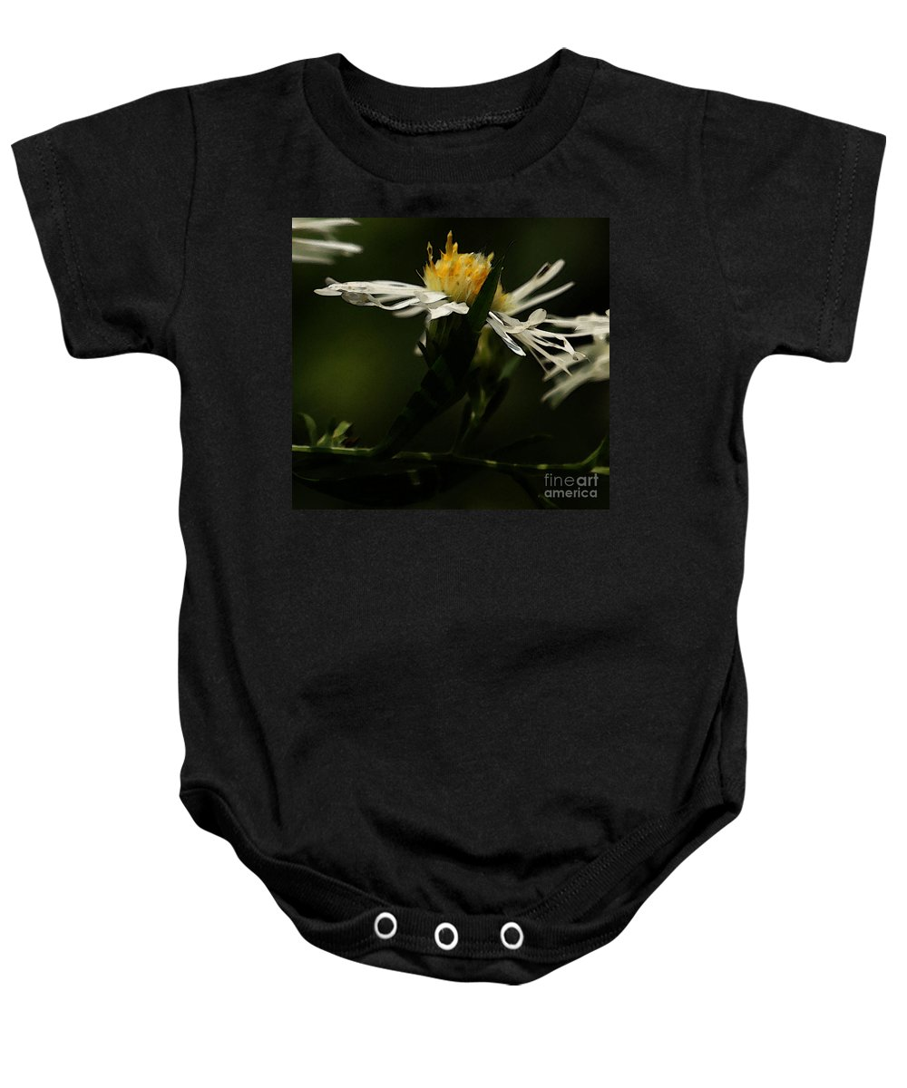 Aster Baby Onesie featuring the photograph White Aster by Linda Shafer