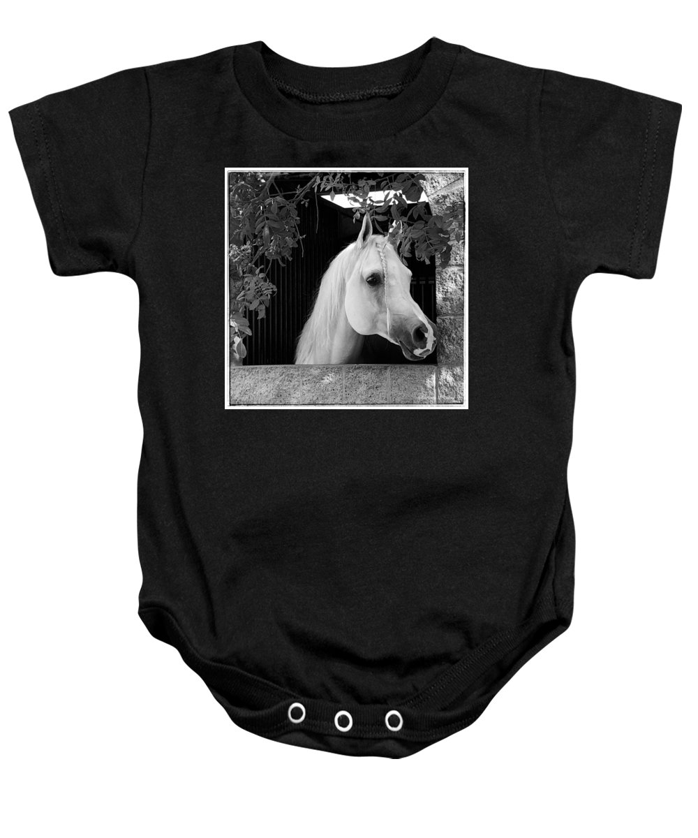 Horse Baby Onesie featuring the photograph White Beauty - Series #5 by Barbara Zahno