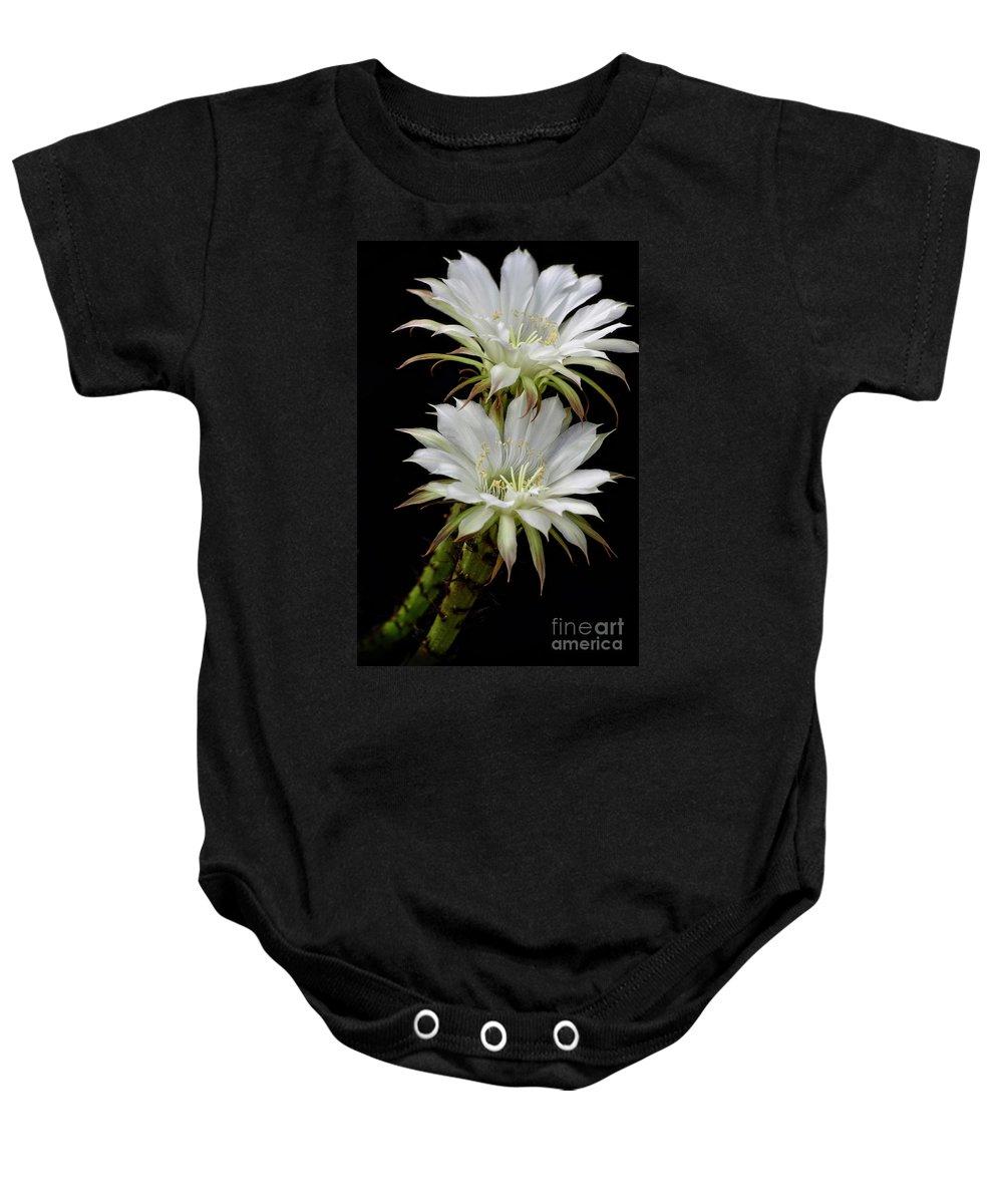 Arizona Baby Onesie featuring the photograph White Cactus Flowers by Saija Lehtonen