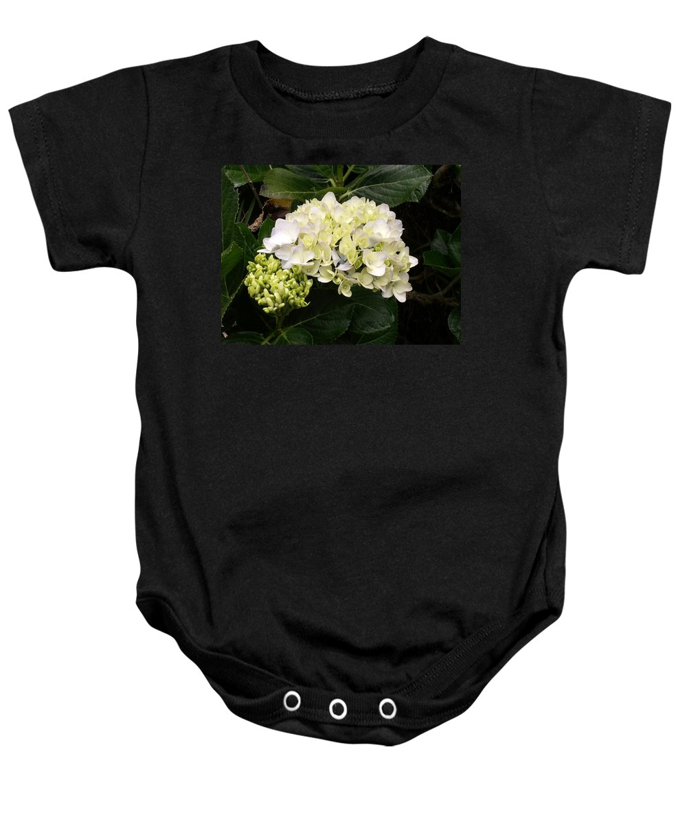 Flower Baby Onesie featuring the photograph White Hydrangeas by Amy Fose