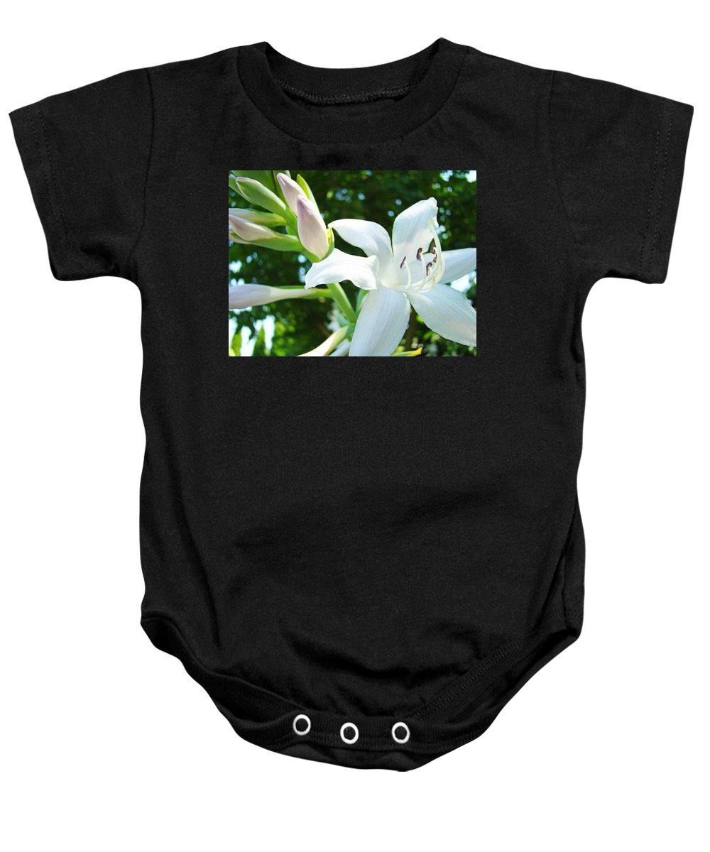 Lilies Baby Onesie featuring the photograph White Lily Flowers Art Prints Lilies Giclee Baslee Troutman by Baslee Troutman