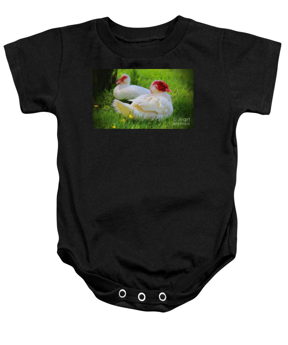 Muskovy Baby Onesie featuring the photograph White Muscovy Ducks by Elizabeth Winter