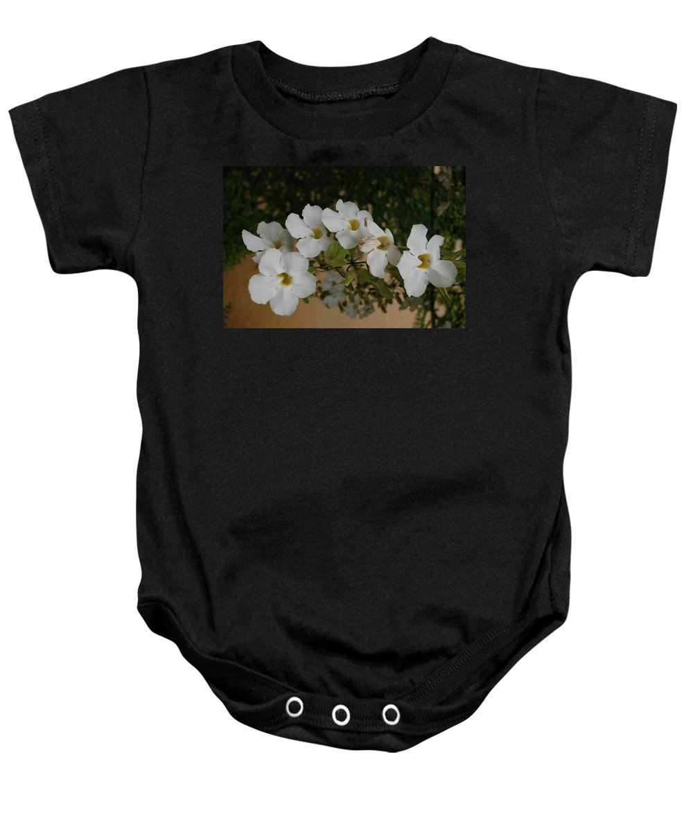 Macro Baby Onesie featuring the photograph White Orchids by Rob Hans