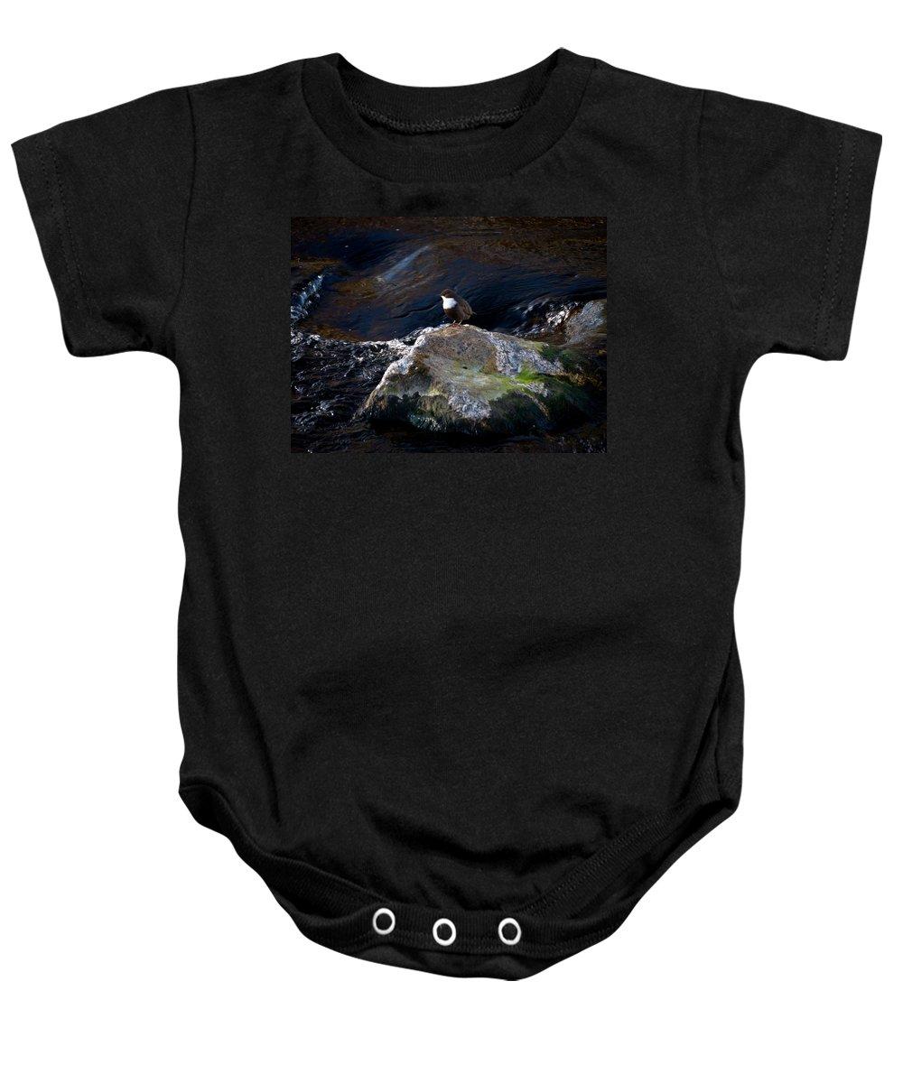 Lehtokukka Baby Onesie featuring the photograph White-throated Dipper Nr 1 by Jouko Lehto