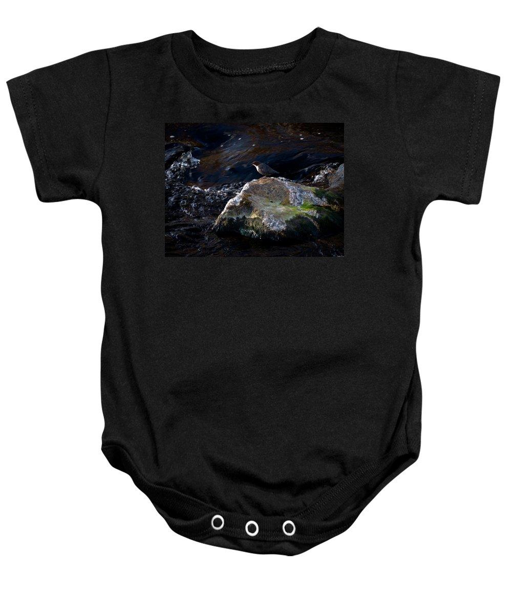 Lehtokukka Baby Onesie featuring the photograph White-throated Dipper Nr 2 by Jouko Lehto