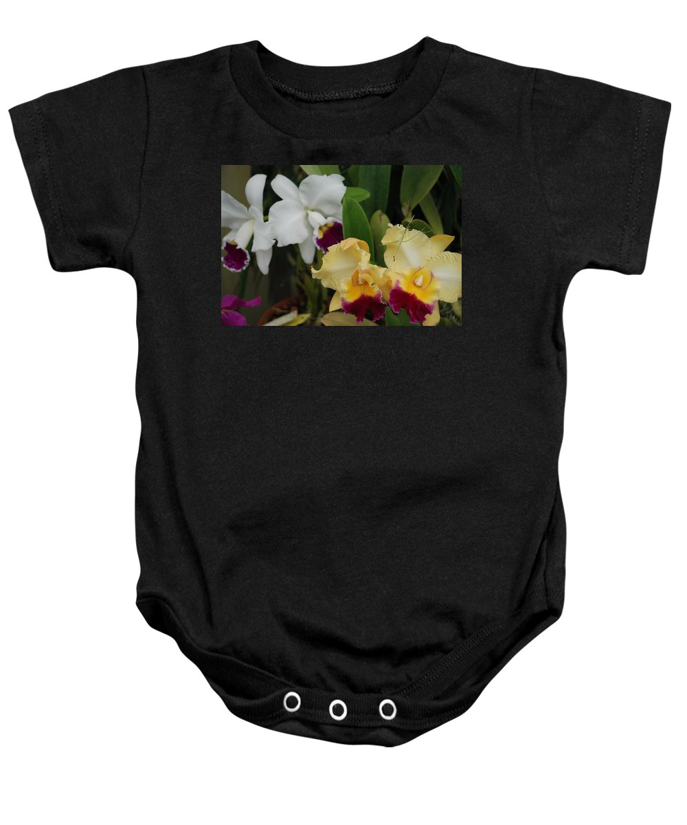 Macro Baby Onesie featuring the photograph White Yellow Orchids by Rob Hans