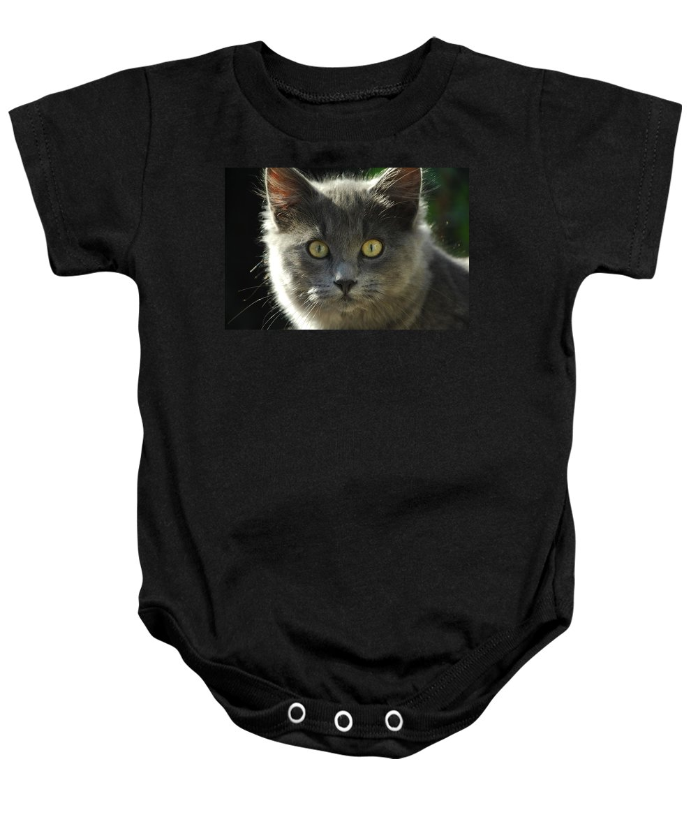Cat Baby Onesie featuring the photograph Who Me by Donna Blackhall
