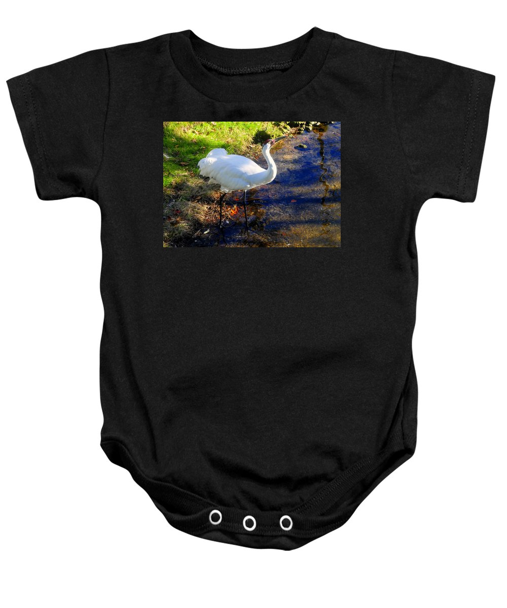 Whooping Crane Baby Onesie featuring the photograph Whooping Crane by David Lee Thompson
