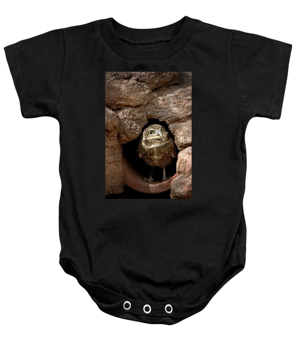 Owl Baby Onesie featuring the photograph Who's There by Phyllis Denton