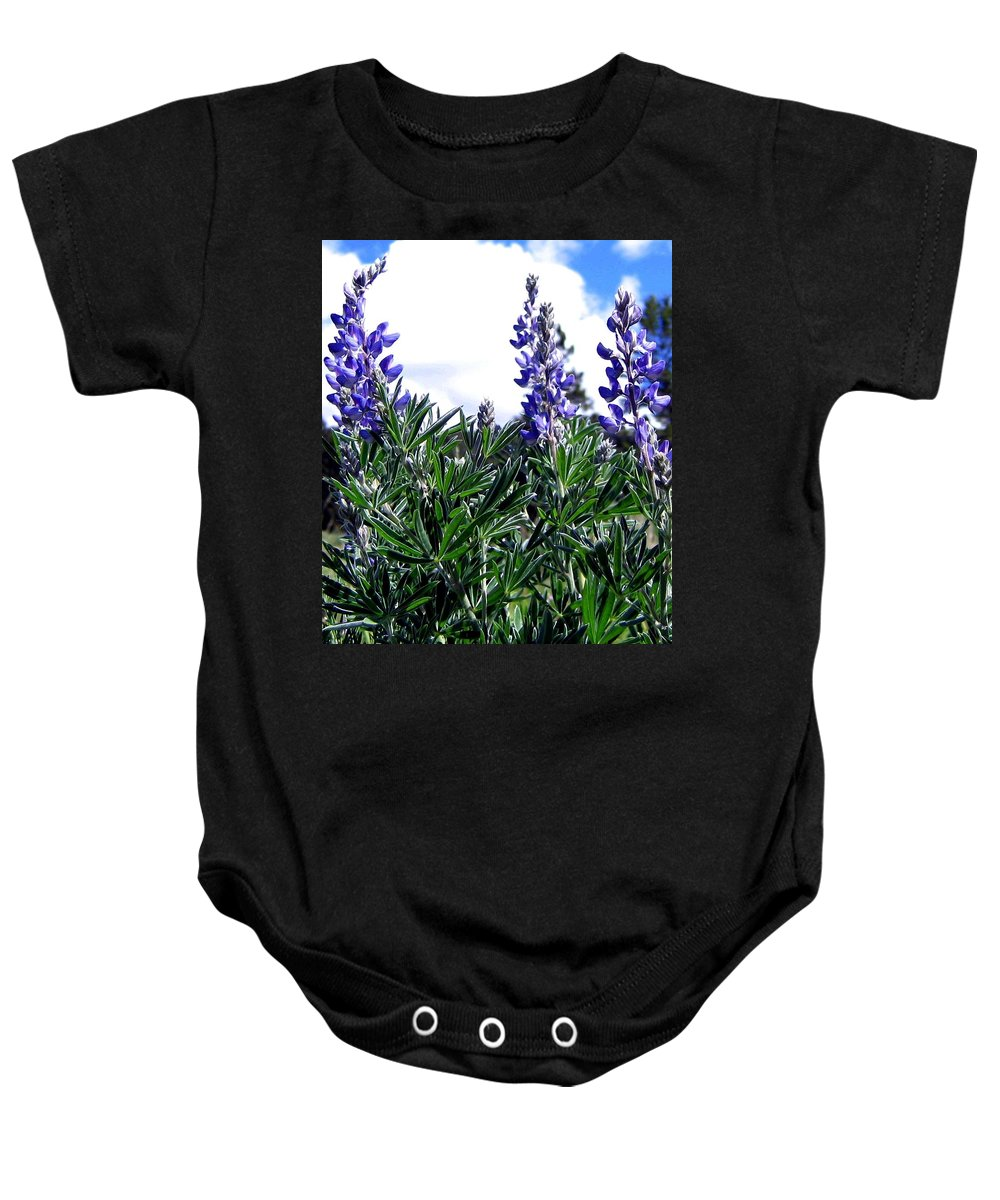 Lupines Baby Onesie featuring the photograph Wild Lupines by Will Borden