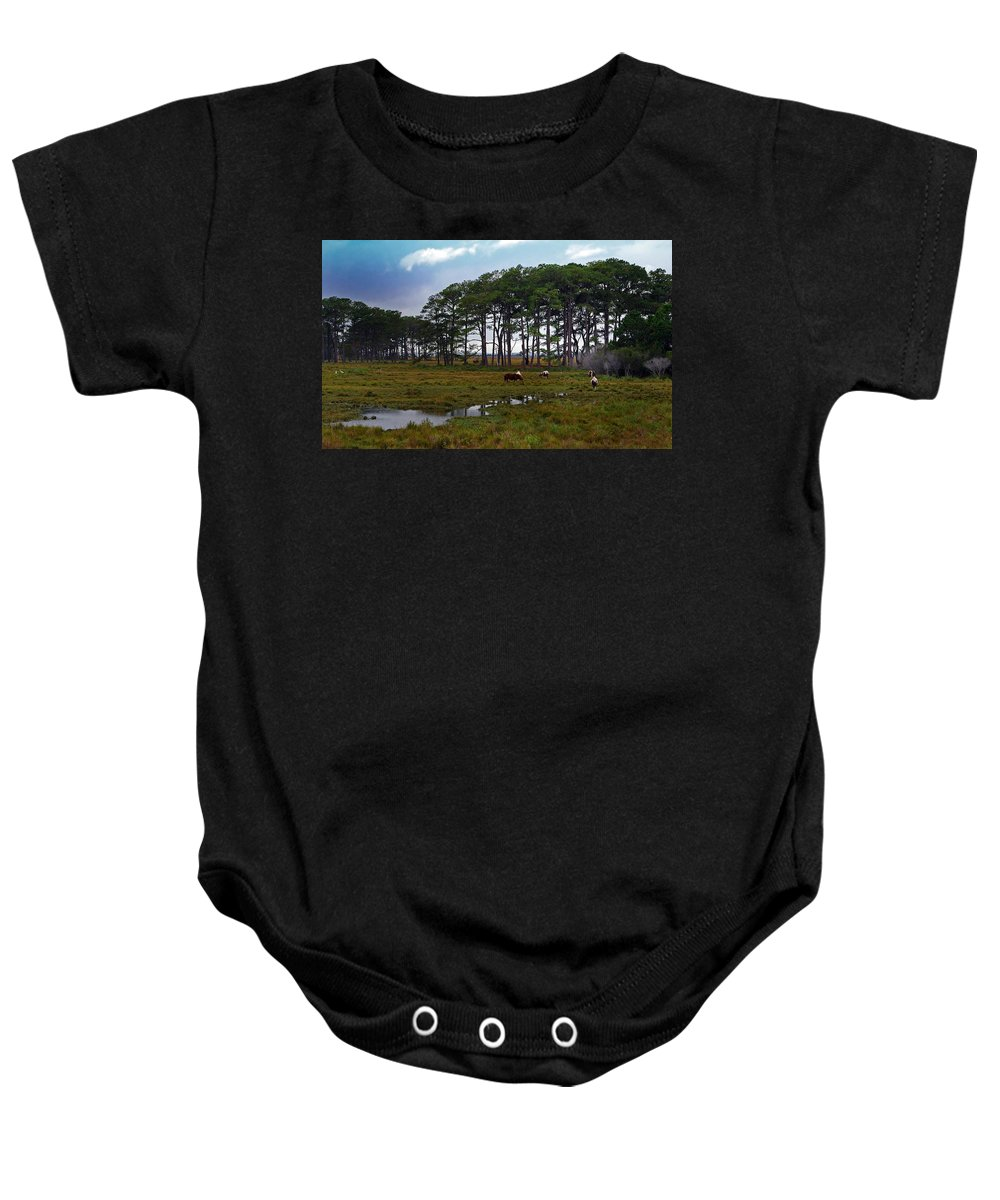 Pony Baby Onesie featuring the photograph Wild Ponies Of Assateague by Lori Tambakis