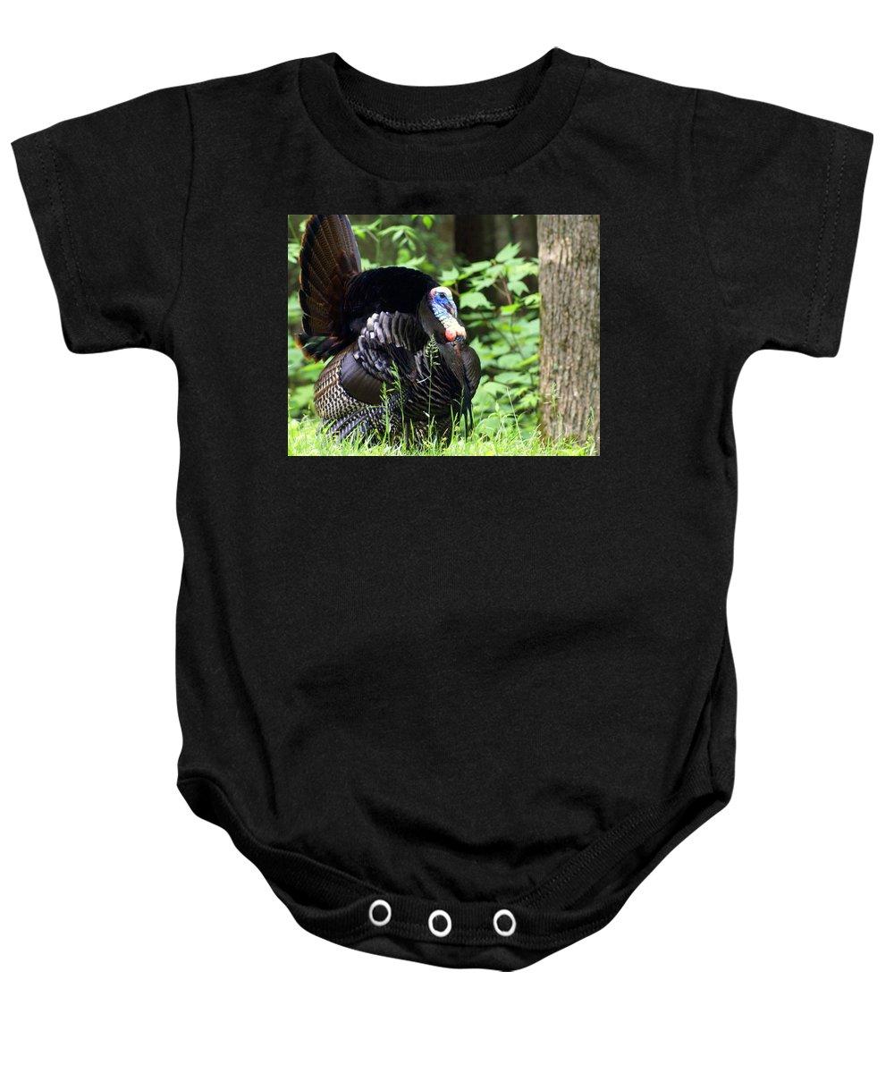 Wild Turkey Baby Onesie featuring the photograph Wild Turkey 2 by Marty Koch