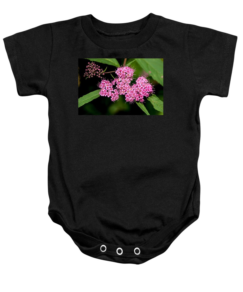 Flower Baby Onesie featuring the photograph Wildflowers Come In Many Sizes by John Haldane