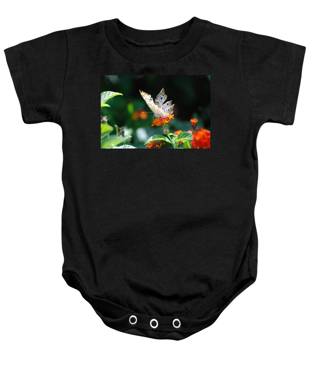 Butterfly Baby Onesie featuring the photograph Winged Butter by Rob Hans