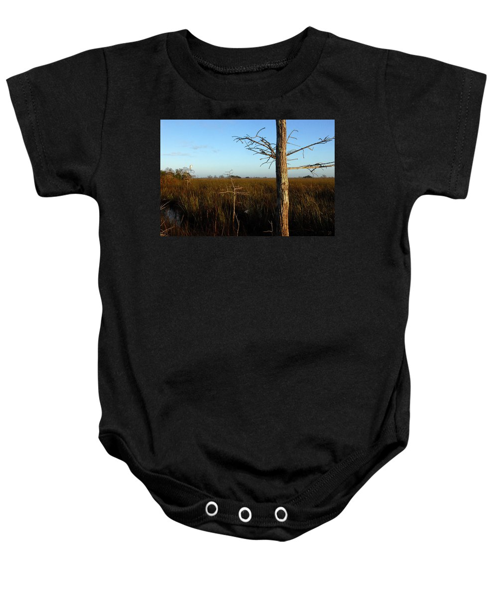 Cypress Trees Baby Onesie featuring the painting Winter Cypress by David Lee Thompson