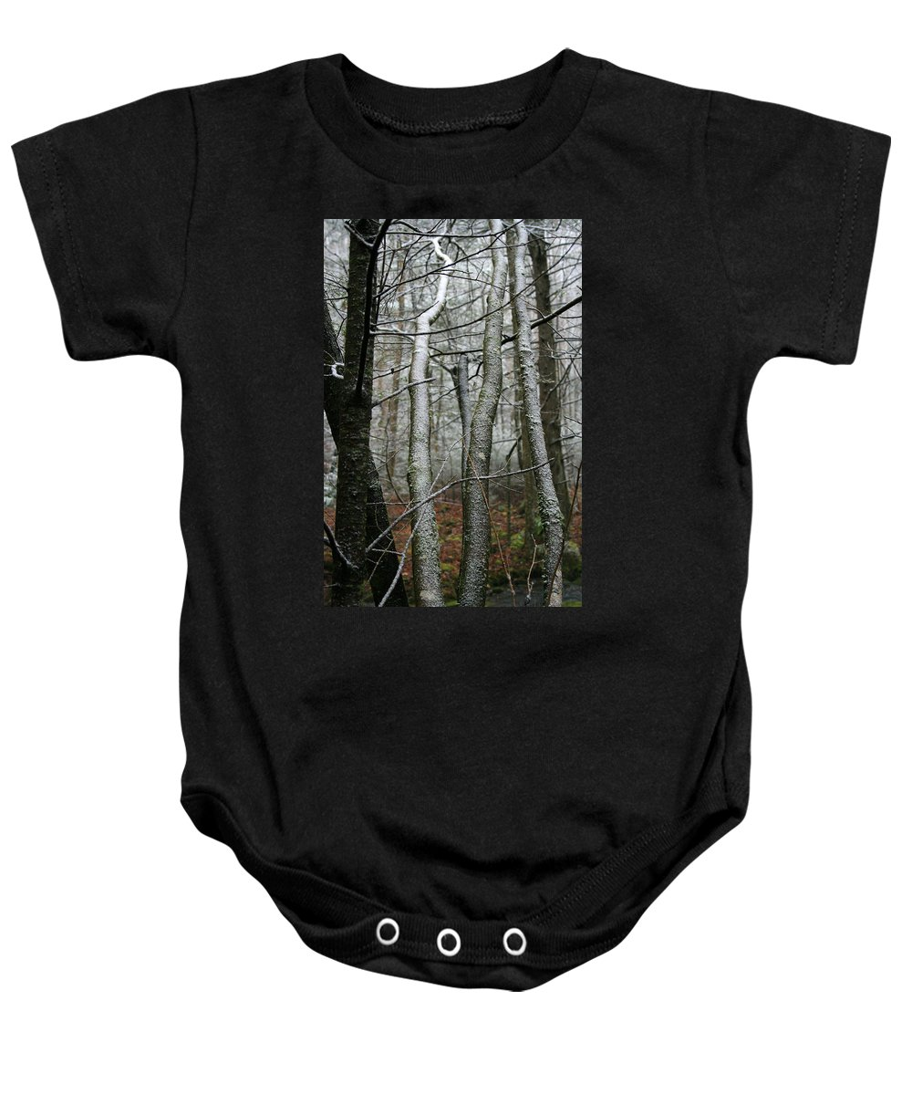 Tree Woods Forest Wood Snow White Green Winter Season Nature Cold Baby Onesie featuring the photograph Wintery Day by Andrei Shliakhau