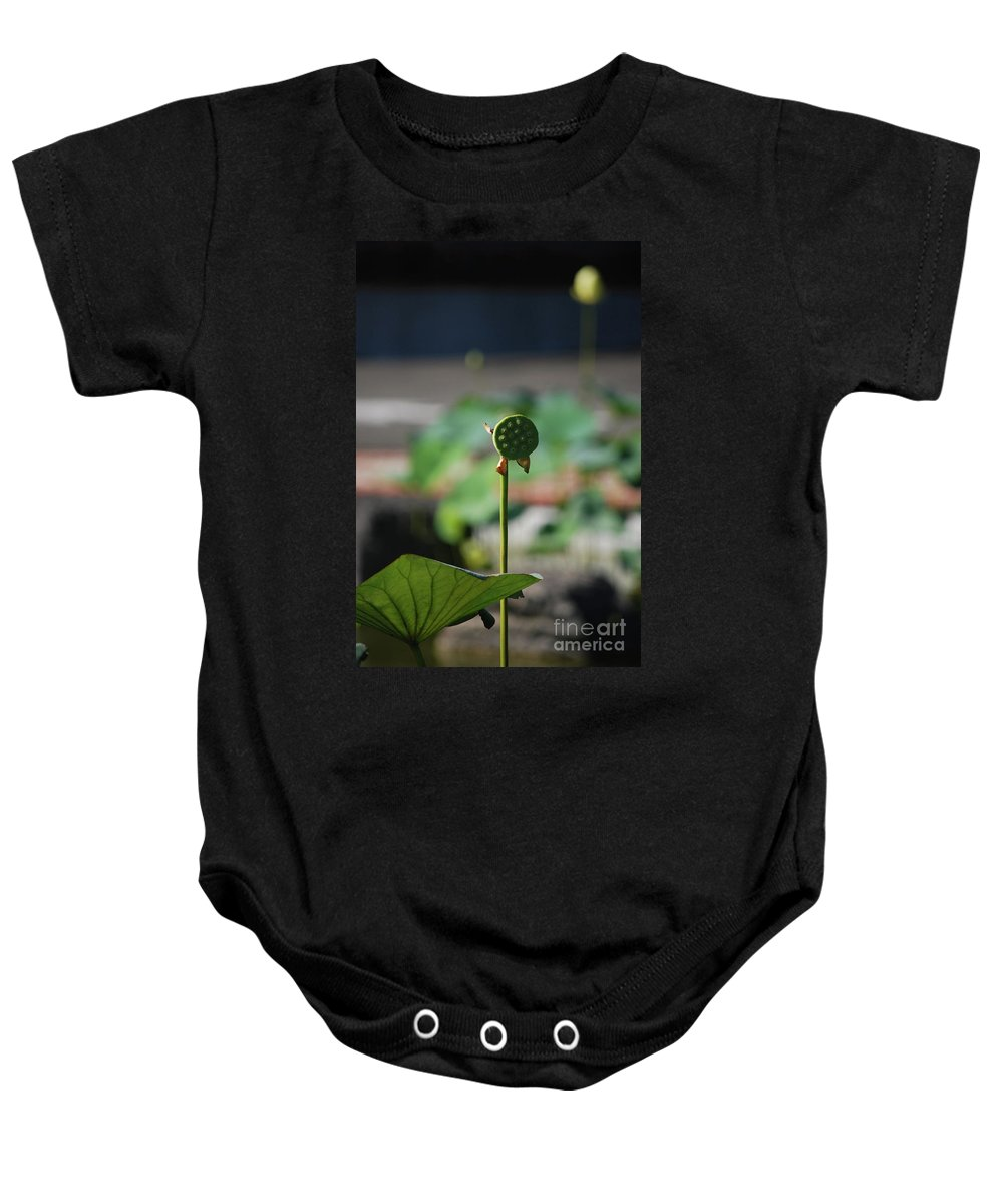 Baby Onesie featuring the photograph Without Protection Number Two by Heather Kirk
