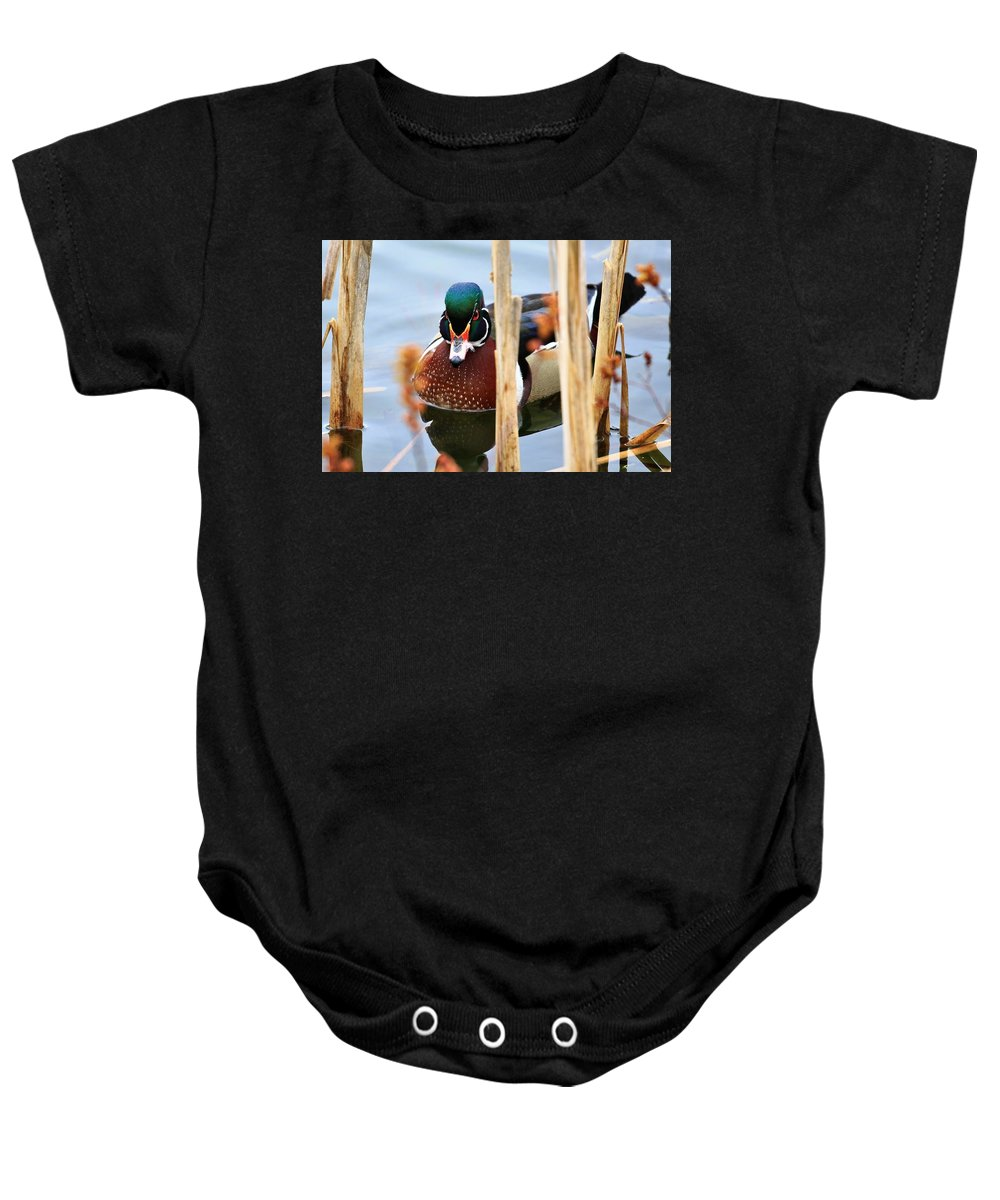 Duck Baby Onesie featuring the photograph Wood Duck In The Reeds by Debbie Storie