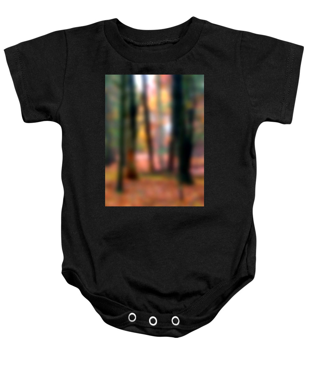 Autumn Baby Onesie featuring the painting Wooded Wonderland by Paul Sachtleben