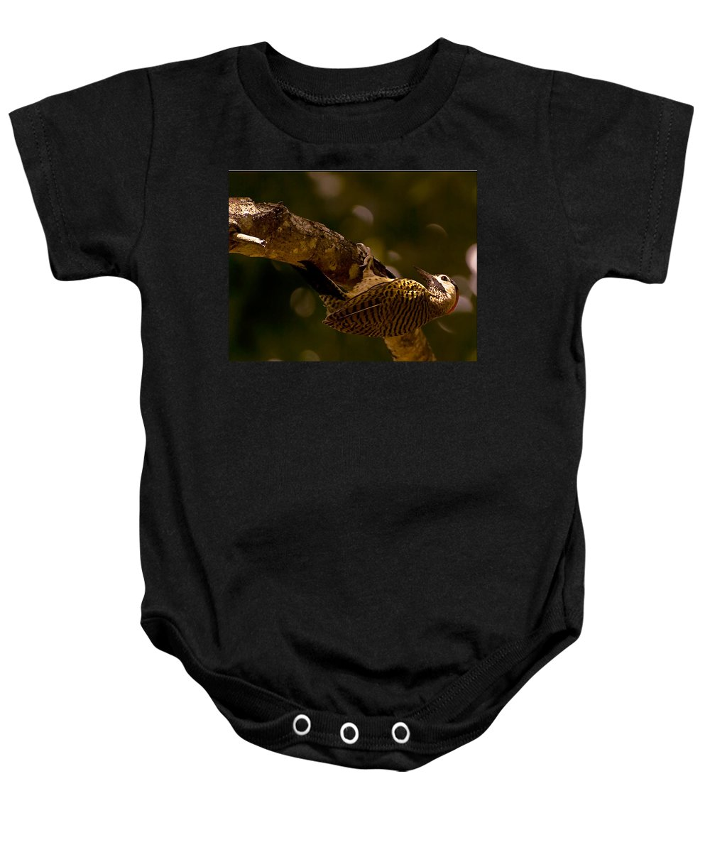Woodpecker Baby Onesie featuring the photograph Woodpecker by Galeria Trompiz