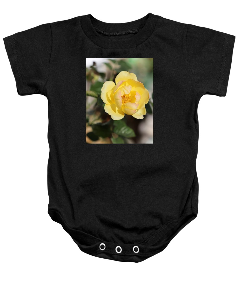 Yellow Rose Baby Onesie featuring the photograph Yellow And Pink Tipped Rose by Theresa Campbell