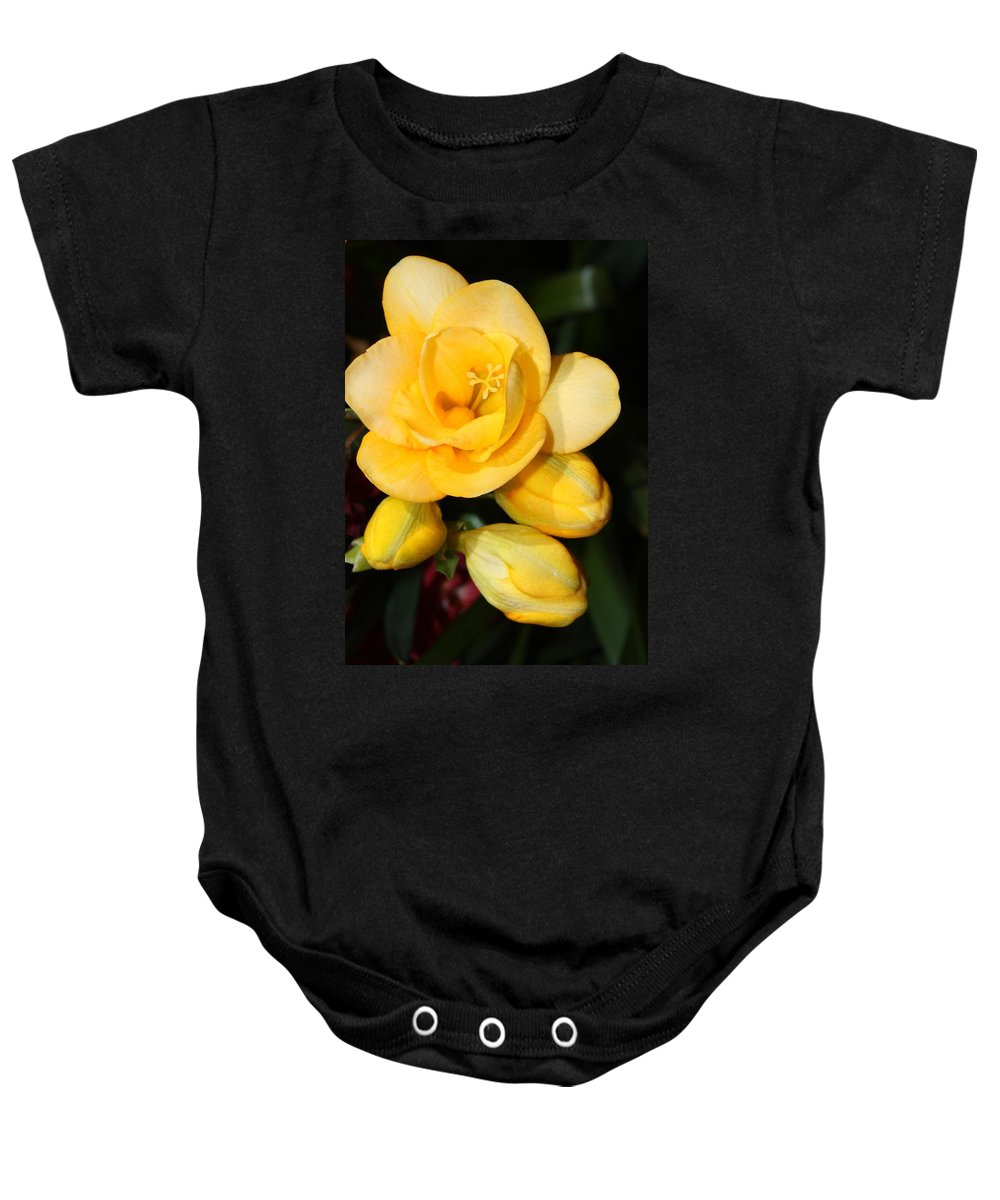 Easter Baby Onesie featuring the photograph Yellow Crocus Closeup by Carol Groenen