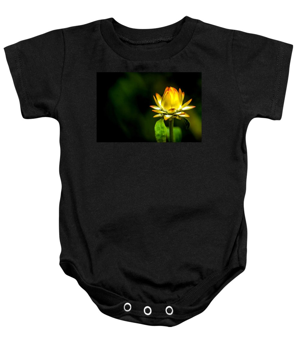 Agriculture Baby Onesie featuring the photograph Yellow Flower 7 by Jijo George