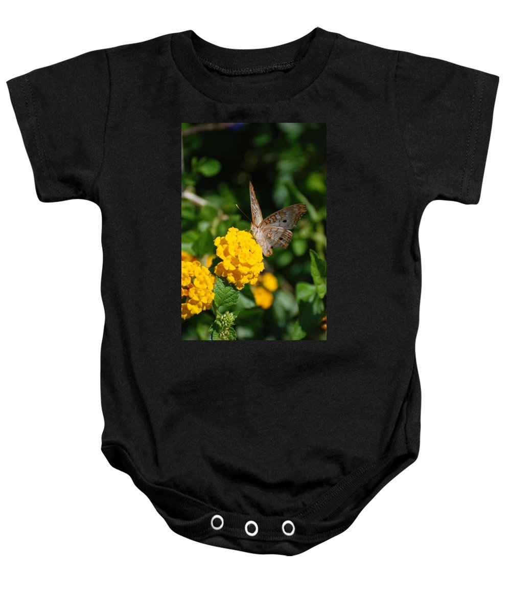 Butterfly Baby Onesie featuring the photograph Yellow Flower Brown Fly by Rob Hans