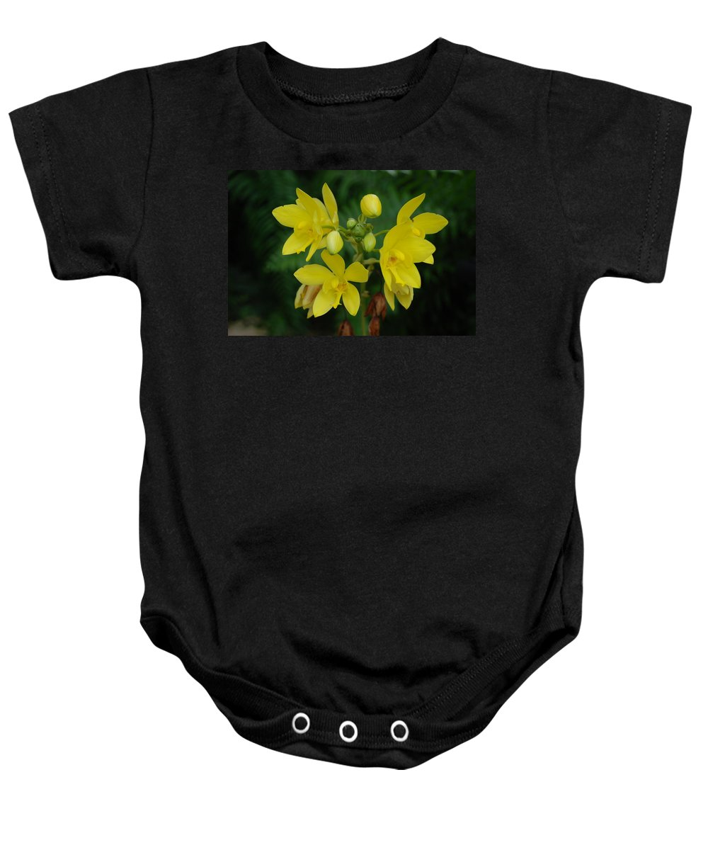 Macro Baby Onesie featuring the photograph Yellow Flower by Rob Hans